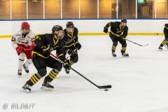500_2189-Ishockey-Oliver-Tärnström-2020januari05_
