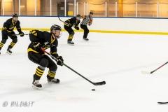 500_2190-Ishockey-Oliver-Tärnström-2020januari05_