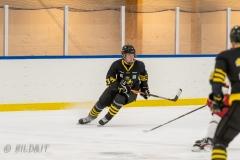 500_2202-Elvis-Jansson-Ishockey-2020januari05_