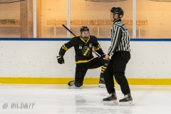 500_2213-Ishockey-Vincent-Reimer-2020januari05_