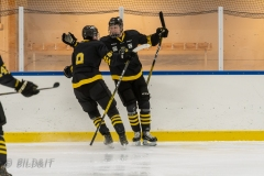 500_2225-Ishockey-2020januari05_