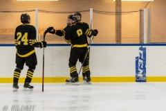 500_2231-Ishockey-2020januari05_