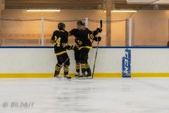 500_2234-Ishockey-2020januari05_
