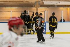 500_2246-Ishockey-2020januari05_