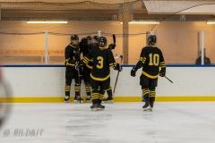 500_2249-Ishockey-2020januari05_