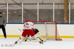 500_2271-Ishockey-2020januari05_