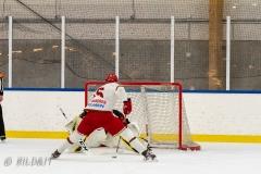 500_2272-Ishockey-2020januari05_