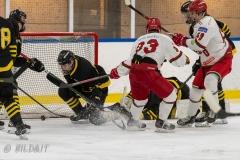 500_2318-Ishockey-2020januari05_