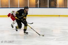 500_2344-Ishockey-Tim-Welin-2020januari05_