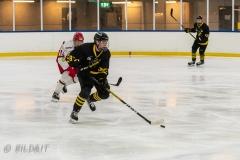 500_2345-Ishockey-Tim-Welin-2020januari05_