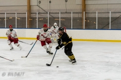 500_2361-Ishockey-William-Rosenfors-2020januari05_