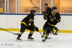 500_2362-Ishockey-2020januari05_