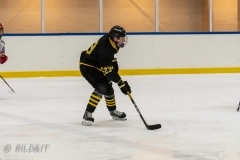 500_2374-Ishockey-Vincent-Reimer-2020januari05_