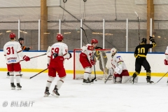 500_2387-Ishockey-2020januari05_