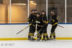 500_2418-Ishockey-2020januari05_
