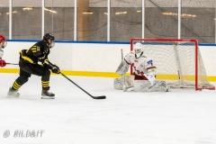 500_2428-Ishockey-2020januari05_