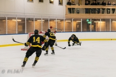850_0531-Ishockey-2020januari05_
