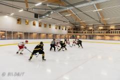 850_0534-Ishockey-2020januari05_