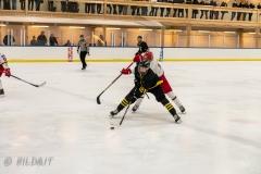 850_0540-Ishockey-2020januari05_