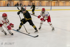 850_0542-Ishockey-Tim-Welin-2020januari05_