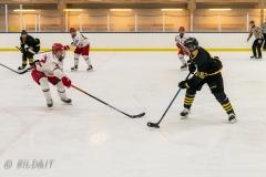 850_0562-Ishockey-2020januari05_