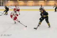 850_0563-Ishockey-2020januari05_