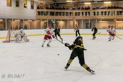 850_0568-Ishockey-2020januari05_