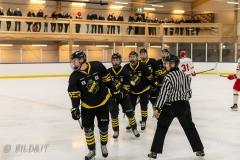 850_0578-Ishockey-2020januari05_