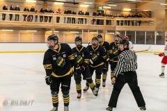 850_0579-Ishockey-2020januari05_