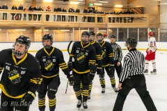 850_0581-Ishockey-2020januari05_