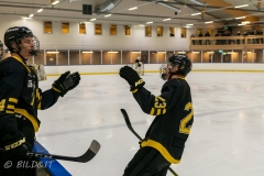 850_0583-Ishockey-2020januari05_