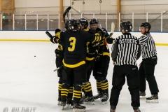 850_0622-Ishockey-2020januari05_