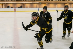 850_0642-Ishockey-2020januari05_