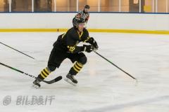 5008476-200828-AIKj20-Isac-Mollerstedt-Ishockey