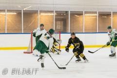 5008496-200828-AIKj20-Ishockey