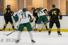 5008519-200828-AIKj20-Ishockey