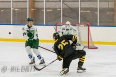 5008536-200828-AIKj20-Ishockey