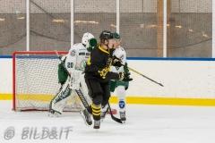 5008571-200828-AIKj20-Ishockey