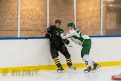 5008665-200828-AIKj20-Ishockey
