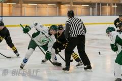 5008671-200828-AIKj20-Ishockey