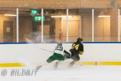 5008723-200828-AIKj20-Ishockey