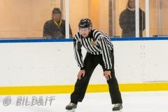 5008763-200828-AIKj20-Ishockey