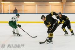 5008810-200828-AIKj20-Ishockey