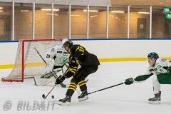 5008815-200828-AIKj20-Ishockey