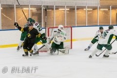 5008823-200828-AIKj20-Ishockey