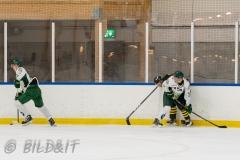 5008965-200828-AIKj20-Ishockey