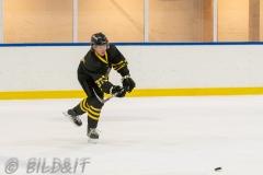 5008984-200828-AIKj20-Filip-Bratt-Ishockey