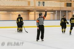 5009021-200828-AIKj20-Ishockey