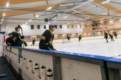 8503683-200815-AIKj20-Ishockey