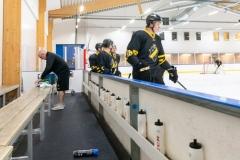 8503695-200815-AIKj20-Ishockey